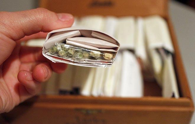 Хранение семян в комоде